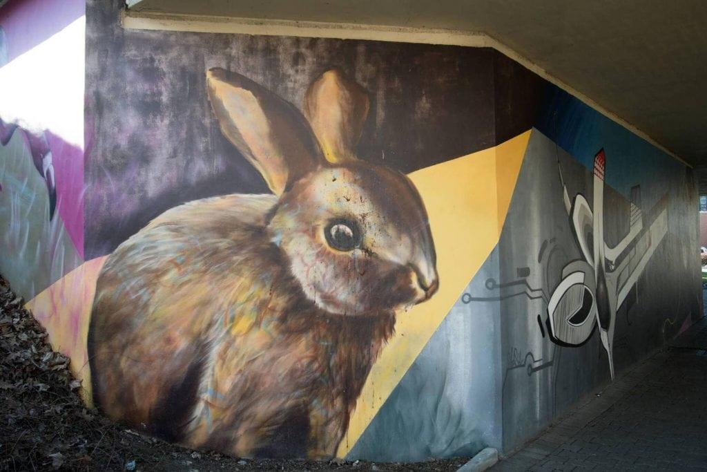 Paderborner Hase vom Künstler Edwin Bormann